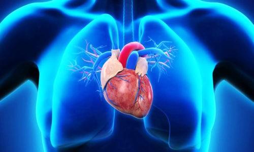 При заболевании сердца и сосудов парацетамол назначают с осторожностью