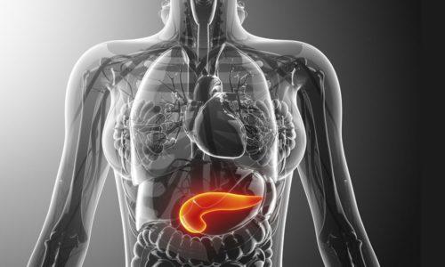 При патологии поджелудочной железы запрещено принимать жир