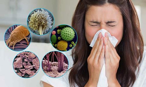 Аллергический бронхит у взрослых диагностируется, когда при сборе анамнеза больного четко прослеживается взаимосвязь симптомов с предшествующим воздействием аллергена на организм