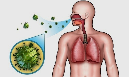 Вирусный бронхит – очень опасная и коварная инфекция, возбудителями которой являются различные вирусы