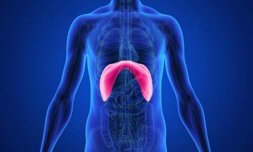 Признаки патологии на рентгеновском снимке видны, потому что стенки диафрагмы уплотнены
