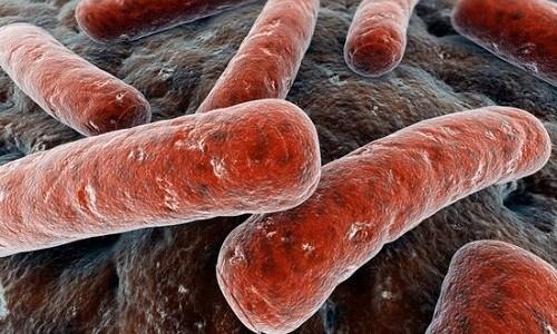 Метронидазол действует относительно микробов гарднереллы
