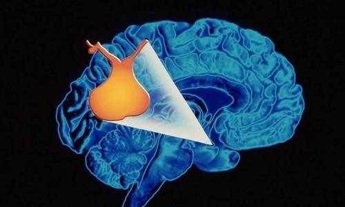 Показаниями к проведению электрофореза с Эуфиллином является гипоксия головного мозга