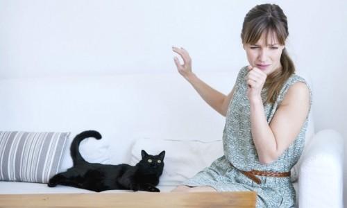 Одна из причин развития астматического бронхита - аллергическая реакция на шерсть животных и другие внешние раздражители