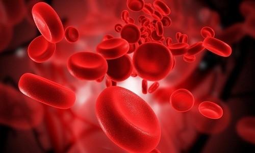 При длительной терапии Зиннатом могут появиться нежелательные изменения состава крови средней степени тяжести