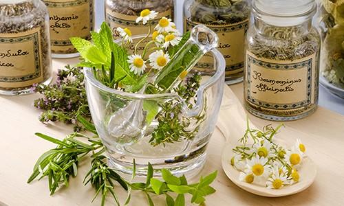 Избавиться от трудноотделяемой мокроты помогут народные рецепты на основе растений и продуктов, обладающих отхаркивающим действием
