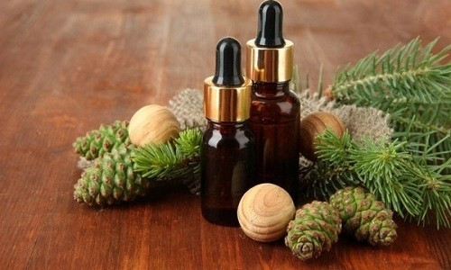 Применение пихтового масла при бронхите помогает избавиться от кашля, боли в грудных мышцах и голове