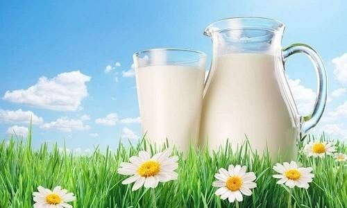 К одному из эффективных методов лечения можно отнести молоко при бронхите