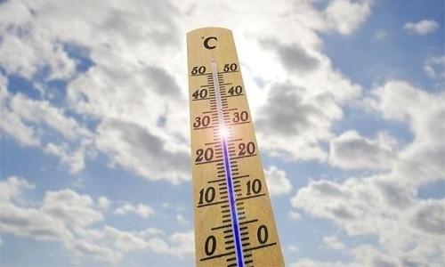 Суппозитории и лиофилизат хранят в защищенном от солнечных лучей месте при температуре не выше +15ºС